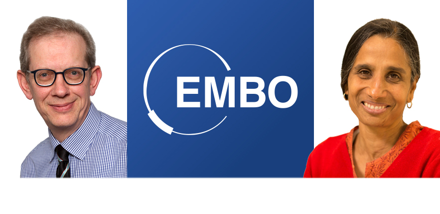 Photos of two CITIID investigators either side of an EMBO logo